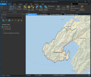 ArcGIS Pro ScreenShot of Map