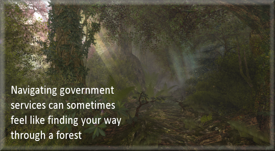 Navigating government services can sometimes feel like finding your way through a forest