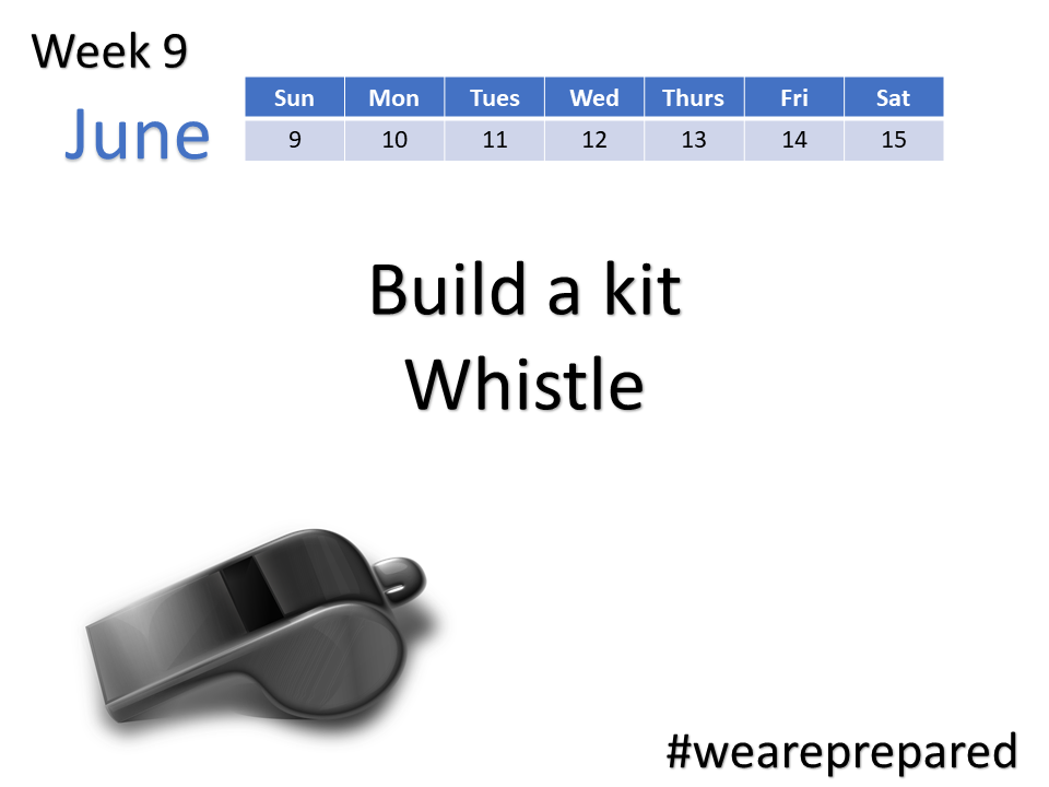 Build a Kit - Buy a Whistle