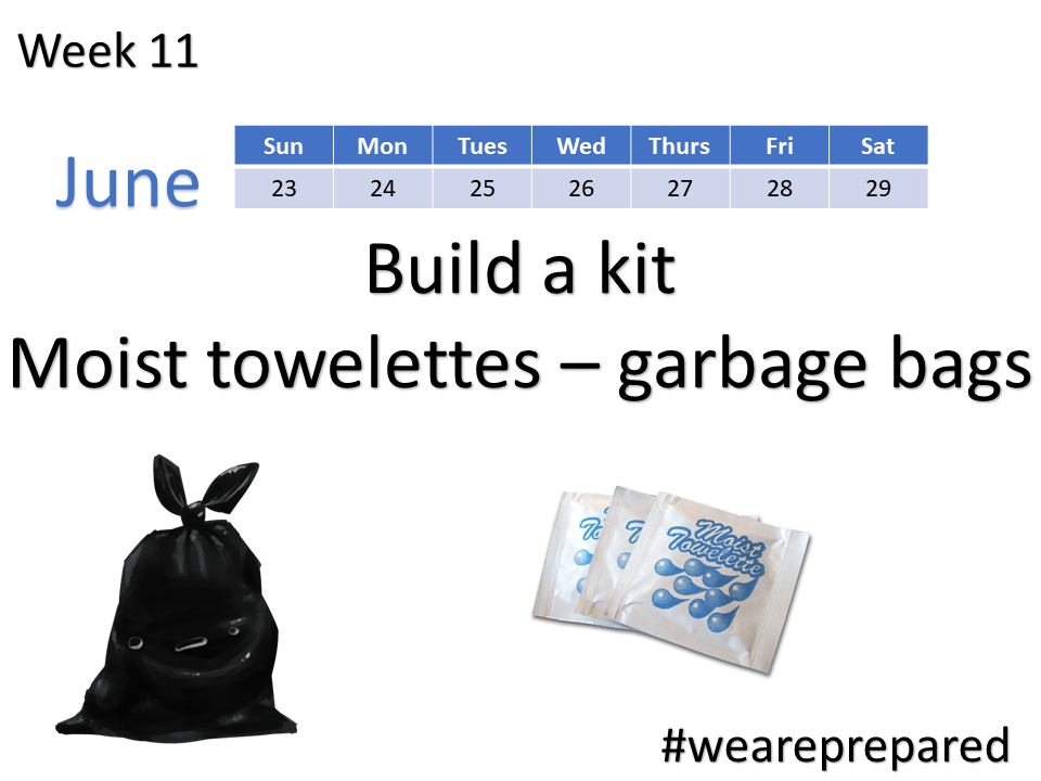 Build a Kit - Garbage bags - week 11