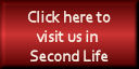 Second Life Registration